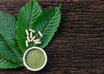 How To Find The Best Kratom Strains For Your Needs – 2021 Guide