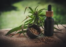 How long does CBD Oil last before it goes bad – 2021 Guide