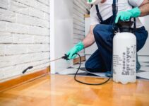 6 Reasons to Pest-Proof Your Home Every Year