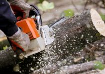 6 Reasons to Leave Tree Removal to the Professionals in 2021