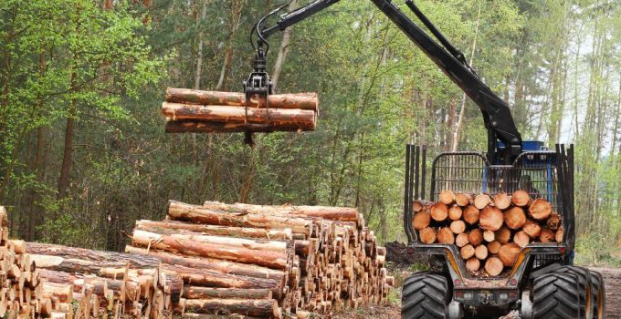 5 Emerging Trends in Forestry and Logging in 2021