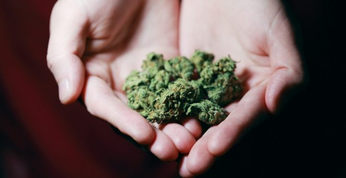 10 Things To Be Mindful About While Buying Weed In Canada