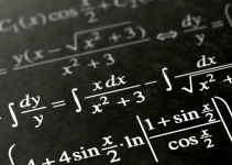 All About the World of Polynomials in 2021