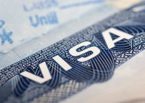 5 Things You Need to Know About the L1 Visa
