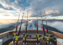 Tips From The World Of Fishing