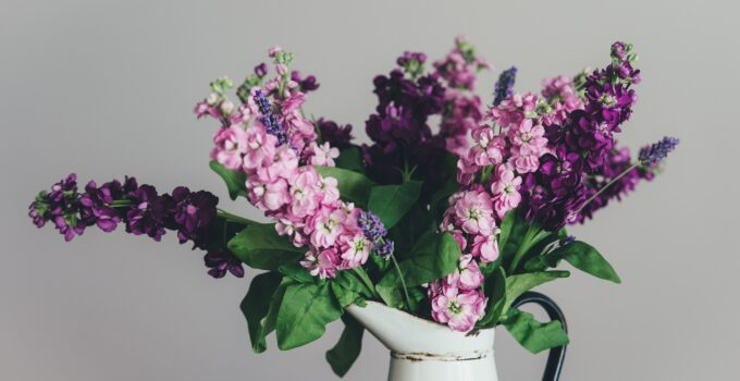 Flowers That Last a Long Time For Your Loved Ones