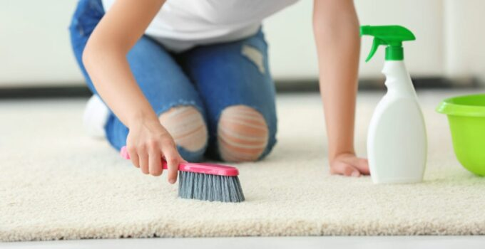 How Often Should You Clean Your Rugs – 2021 Guide