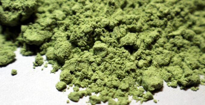 Green Malay Kratom Powder – Is it Worth the Hype?