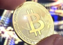 Understanding the PKT Cash Crypto Network