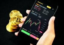 How to Join the Community of Crypto Trading: Start Using the Bitcoin Applications Right Now