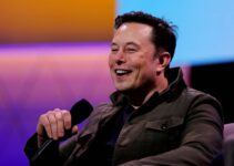 How Elon Musk's Tweets Influence the Cryptocurrency World