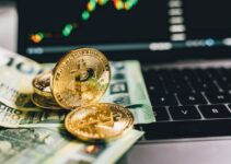 Key Elements of the Bitcoin Trading Process Everyone Should Know