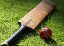 Types of Bonuses for Cricket Betting