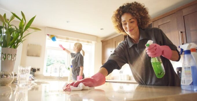 Home Cleaning Tricks and Strategies to Keep a Safe Distance From Pests and Bugs